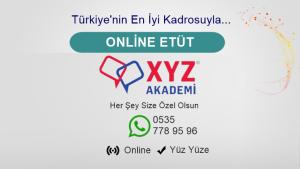 Online Etüt